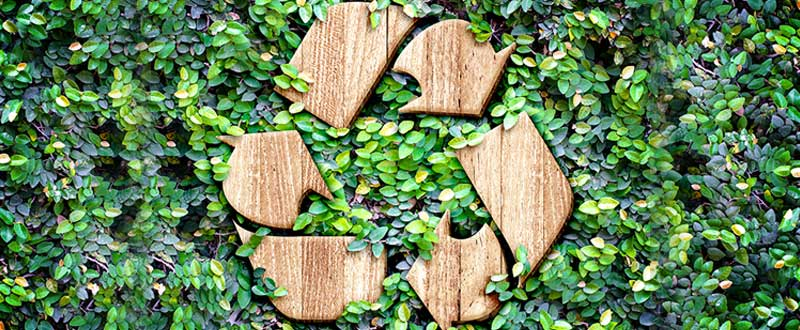 sustainability in mind-business and social responsibility
