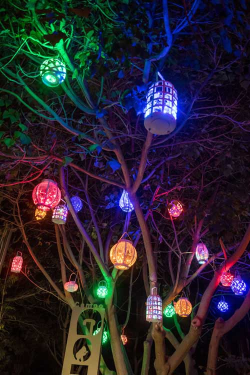Zoo Lights Lanterns